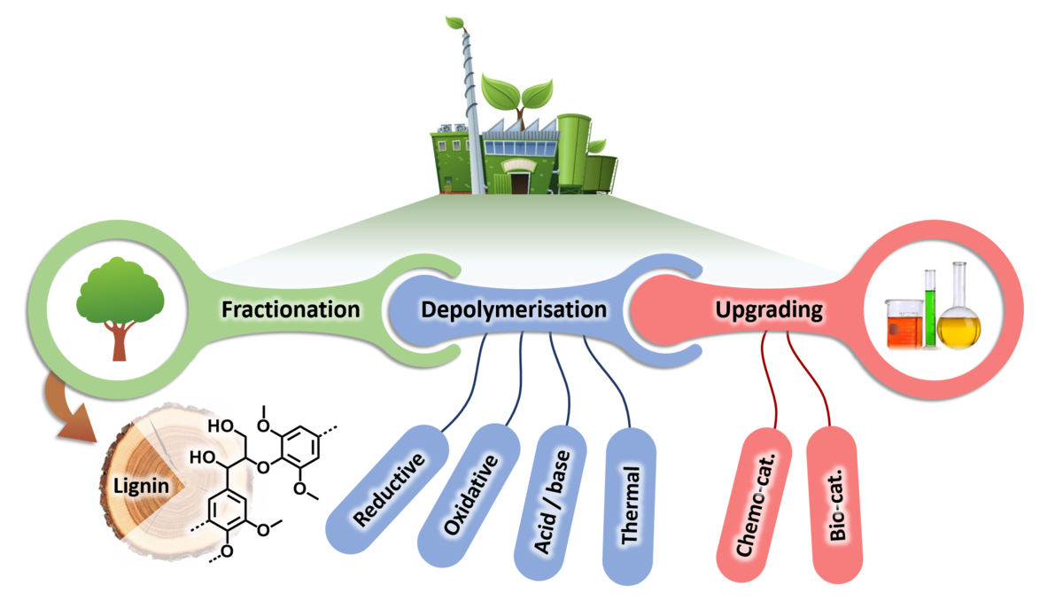 Chemicals from lignin: an interplay of lignocellulose fractionation, depolymerisation, and upgrading