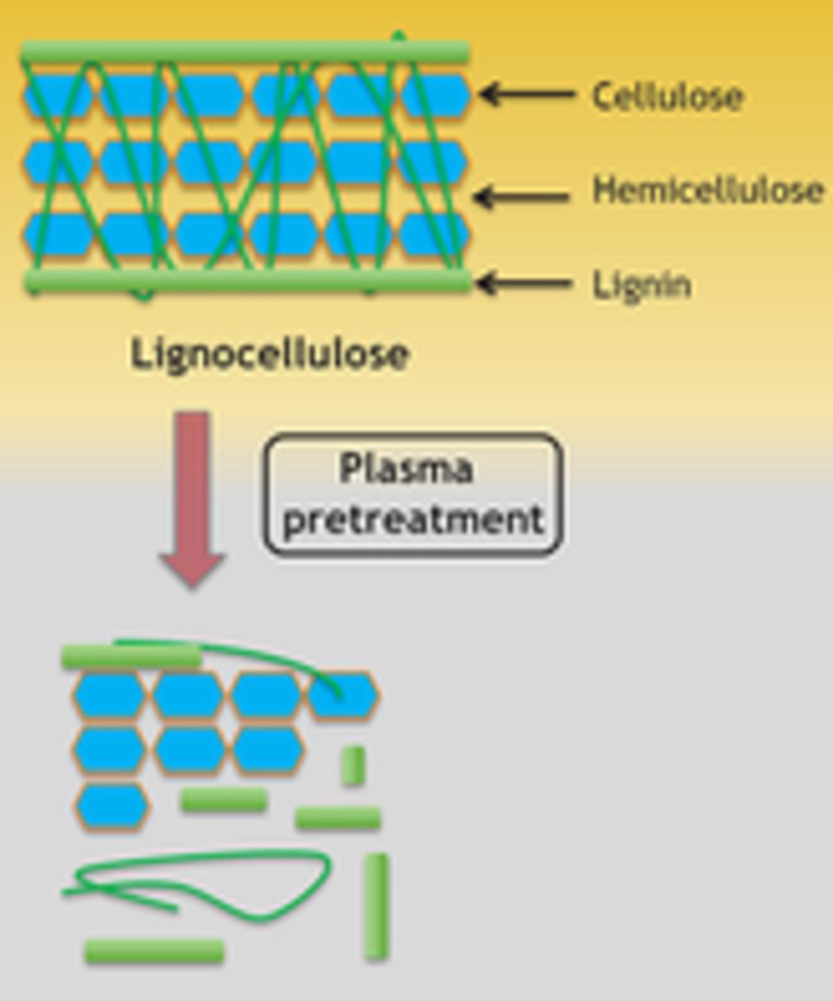 Unconventional Pretreatment of Lignocellulose with Low‐Temperature Plasma