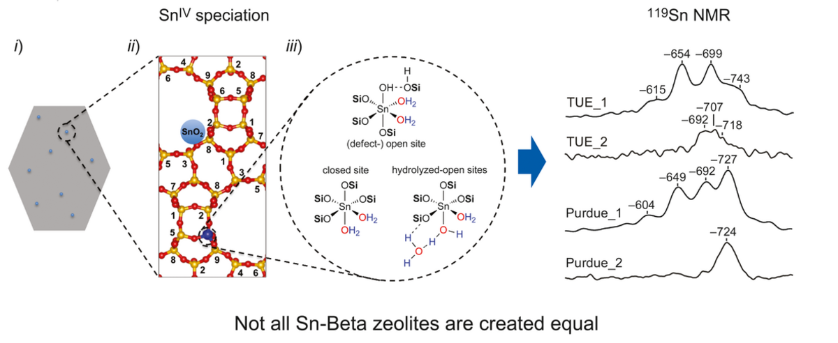Identifying Sn Site Heterogeneities Prevalent Among Sn‐Beta Zeolites