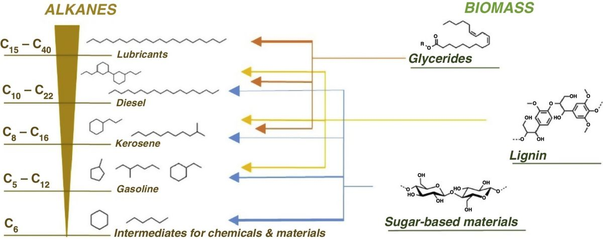 Alkane production from biomass: chemo-, bio- and integrated catalytic approaches